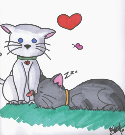 Valentine's Kitties!