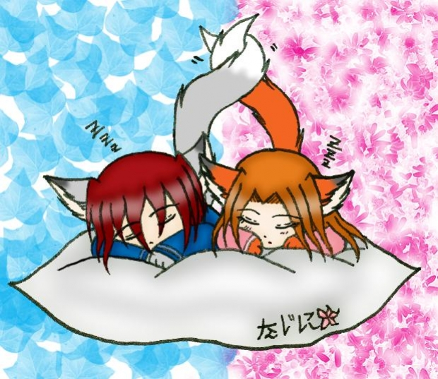 Sleeping Foxes