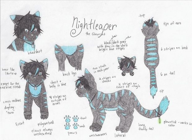 Fursona #2: Nightleaper