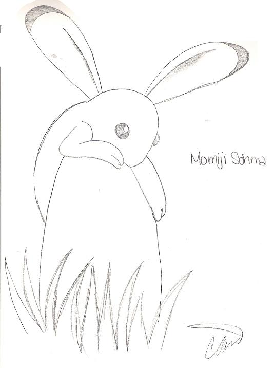 Momiji Bunny. just got pics i drew. Created On: 01/18/07; Category: Fruits