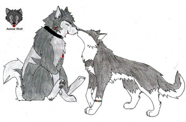 Anime Wolf Love http://www.theotaku.com/fanart/view/234302/love_is_love