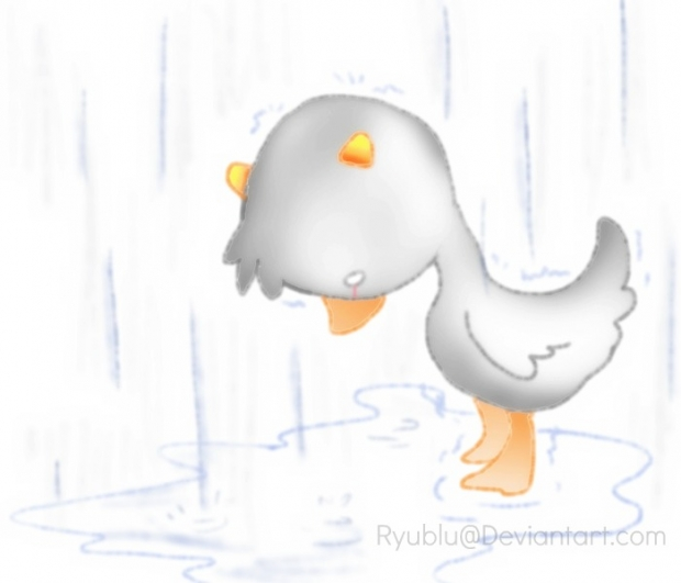 The .Other. Duckling