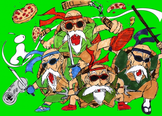 Senior Muten Roshi Turtles