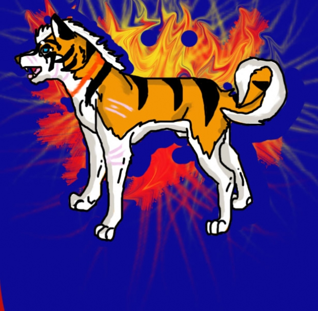 Kajitora (Fan Made Ginga Character)