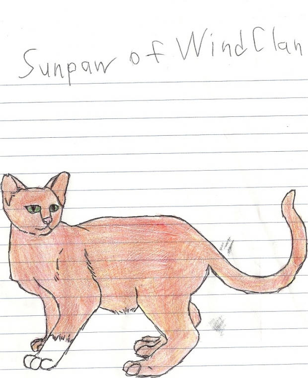 Sunpaw of Windclan