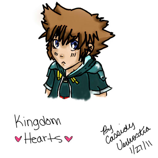 Sora :Kingdom Hearts: