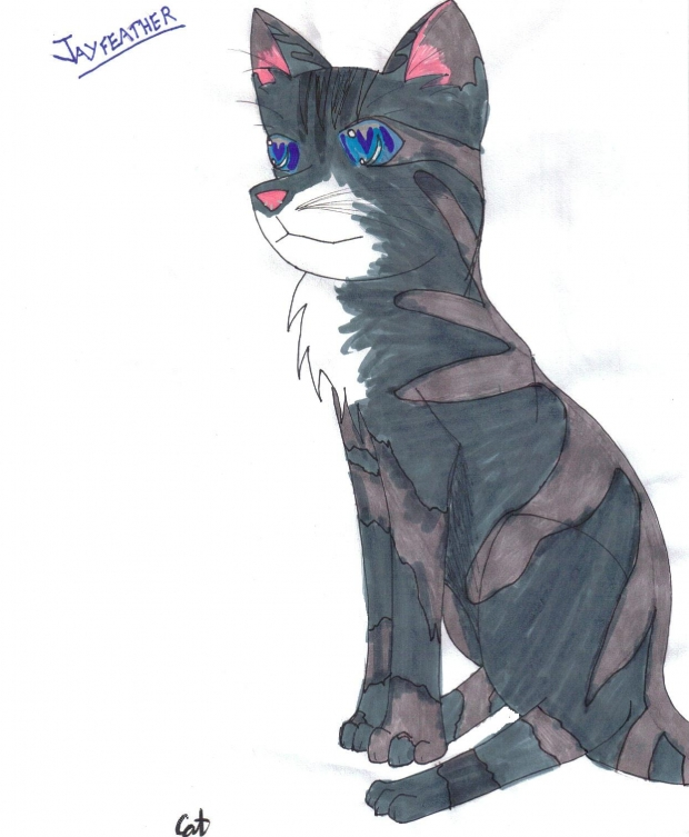 Jayfeather