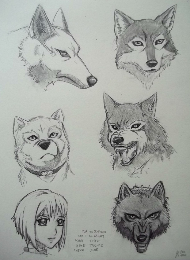 Wolf's Rain Characters-Wolf Form