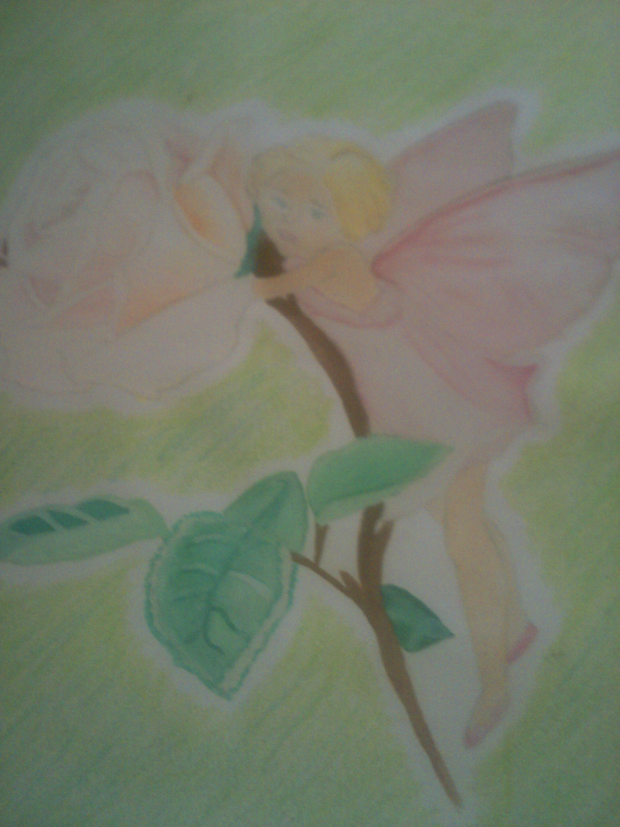 Rose Fairy
