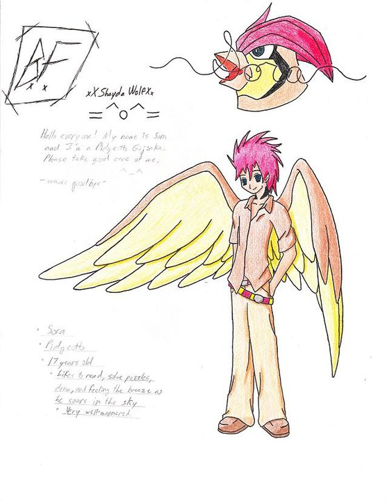 Sora: The Pidgeotto Gijinka (Old)